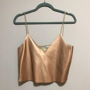 Zara bronze crop top